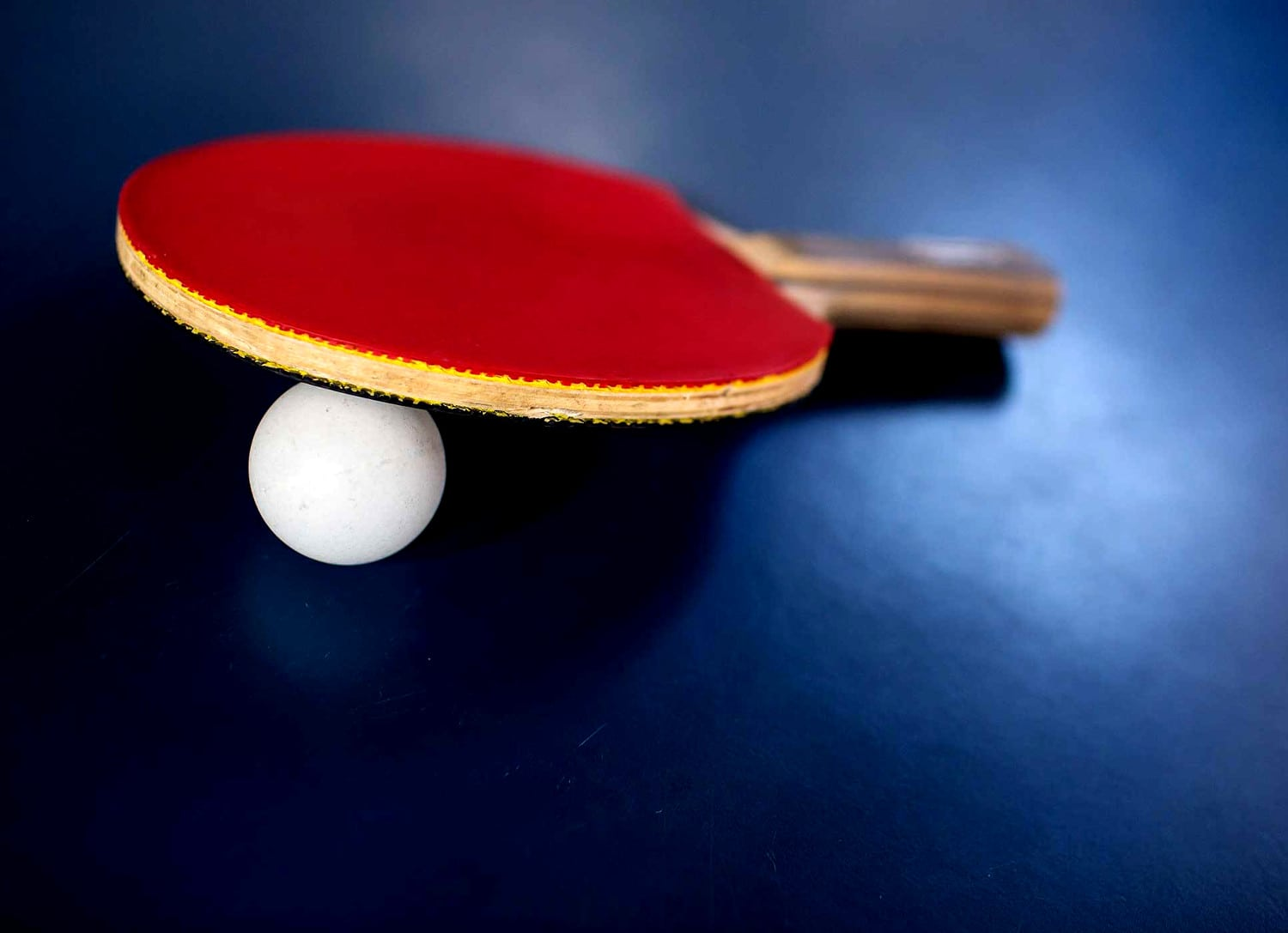 TableTennis PaddleBall 1500