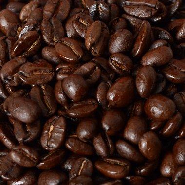 Level Ground Tanzania Organic Coffee