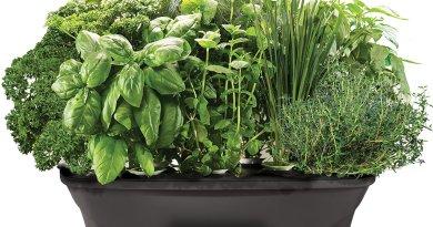 Hydroponic Gardening AeroGarden Bounty with Gourmet Herb Seed Pod Kit