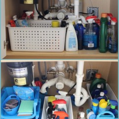 Under Kitchen Sink Organizer Thomasville Cabinets How To Organize The With Dollar Store Bins Week 6 Organization