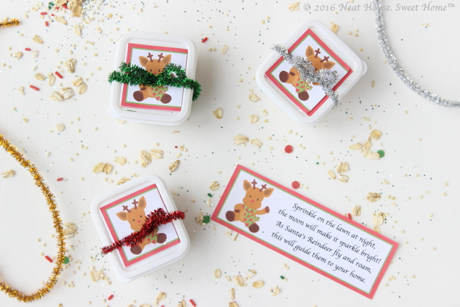 These beautiful magic reindeer food favors are easy to make and the perfect takeaway for a Christmas party.