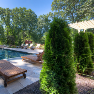 landscape pools with privacy
