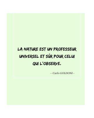 🍃La nature dans tous ses sens. . . #nebiance #nature #citation #inspiration #environnement #beauté #cosmétiquenaturelle #beauténaturelle #naturelle #attentif #apprendre