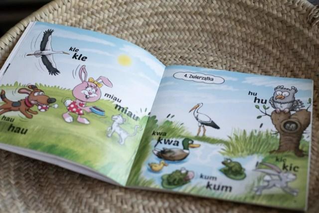 książka do płyty DUbi