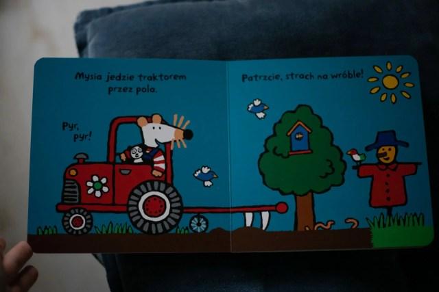 Kartonowa książeczka z ruchomymi zwierzątkami.