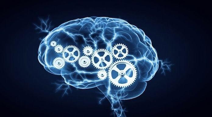 Beyin Gücünü Arttıran 8 Besin Maddesi