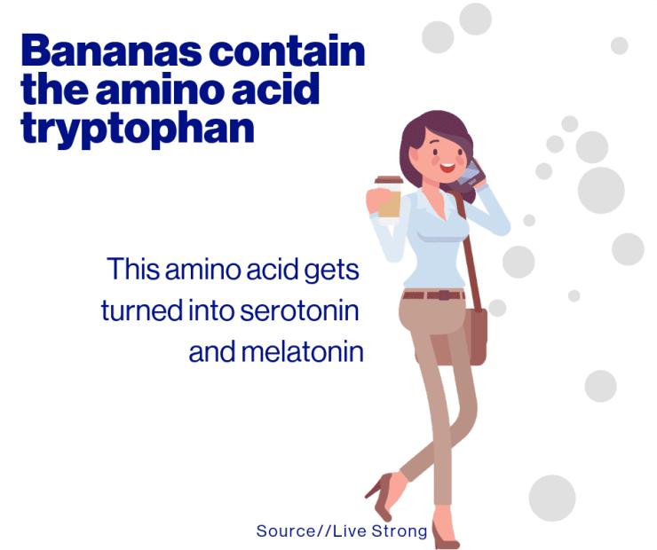 Bananas contain the amino acid tryptophan
