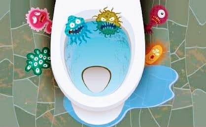 toilet infections