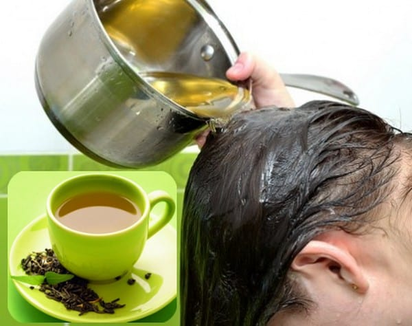 using Camellia sinensis for hair loss
