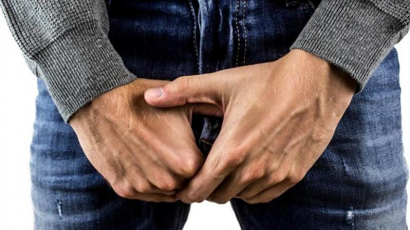 improve your erection strength