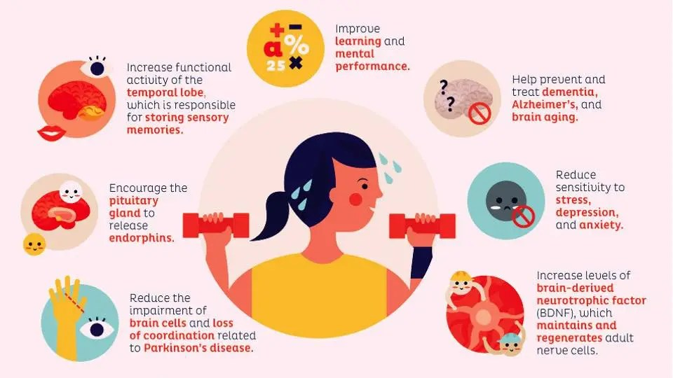 infographics on effects of exercise on the brain
