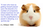 Non-Executive Directors – 'Guinea Pigs' or highly trained professionals?