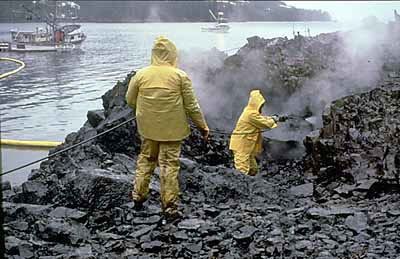 Workers cleaning up oil spill on shore