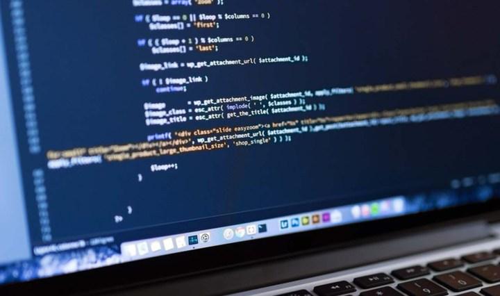 Wordpress programming bug