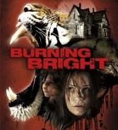 Burning Bright DVD Cover Art