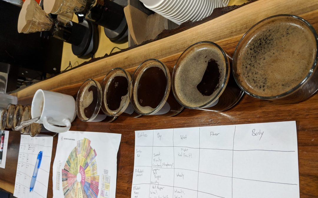 What the Best Coffee Roasters know : natural versus wet process coffee beans