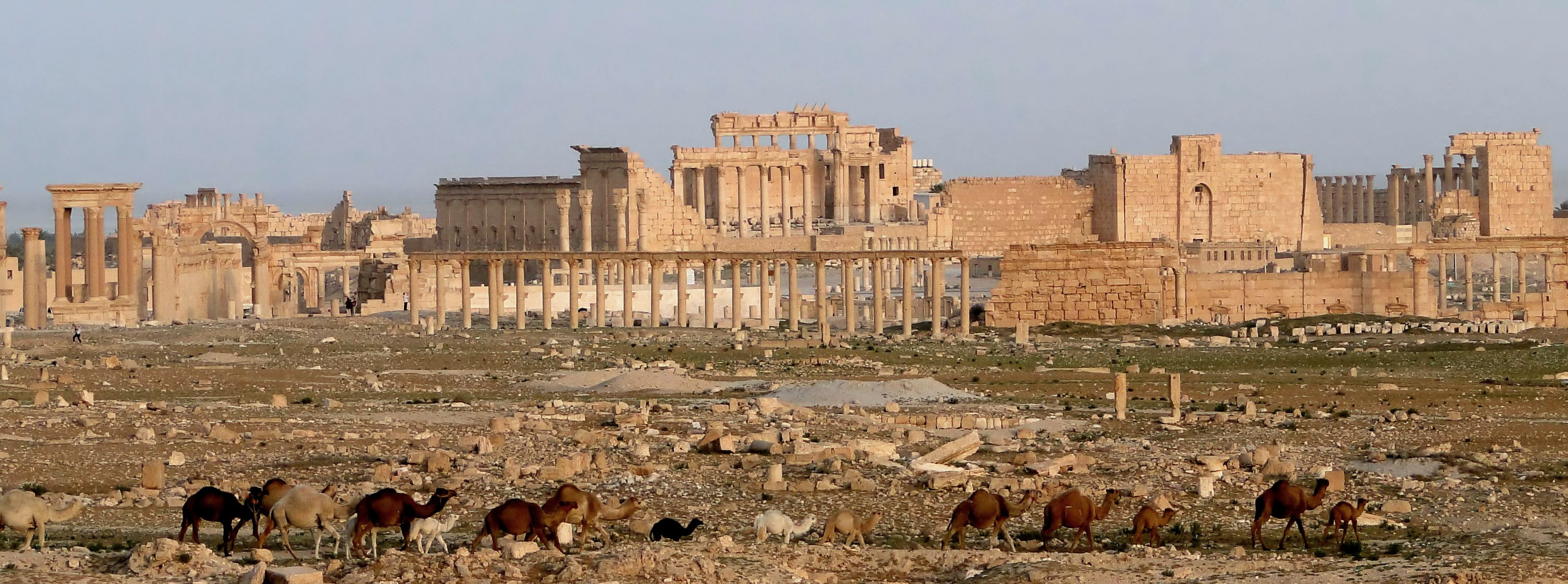 Palmyra ancient site in 2010