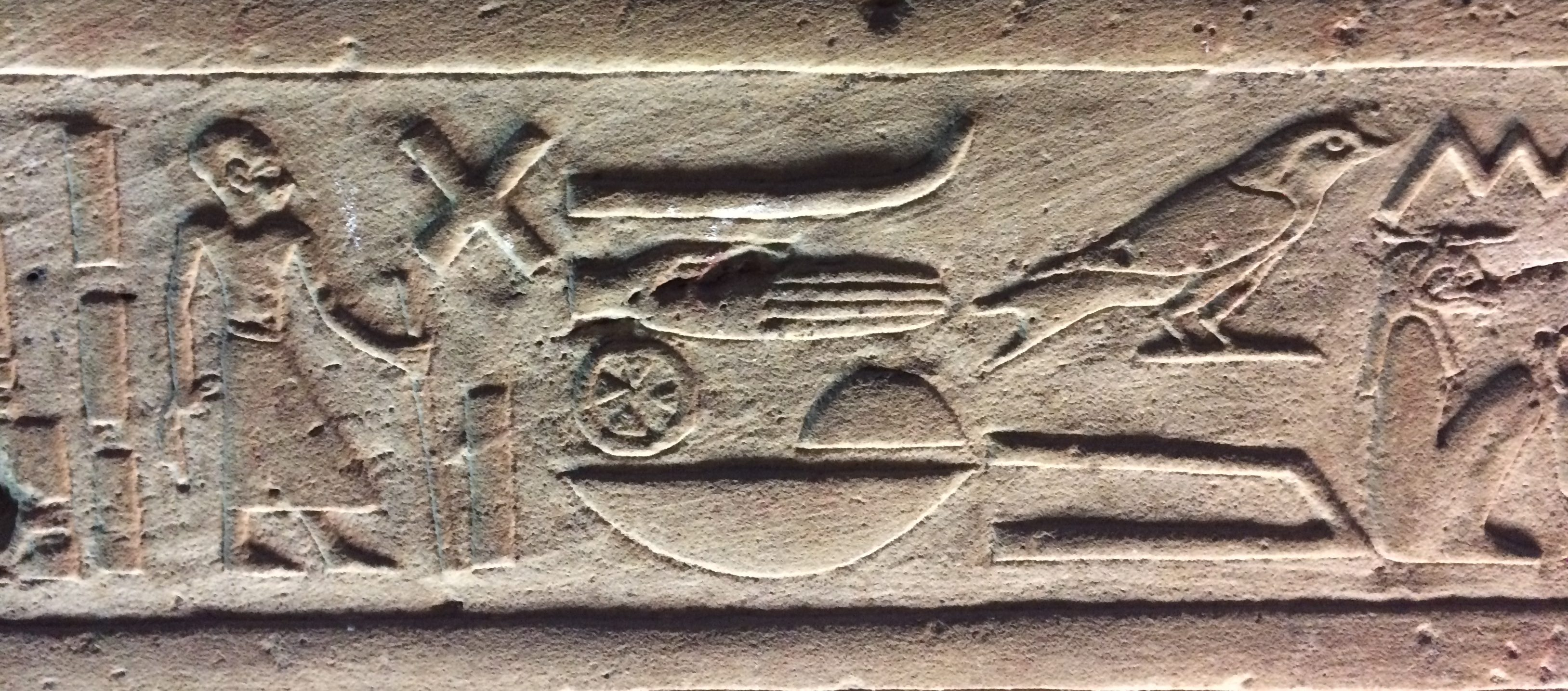 A photo of hieroglyphics including a bird glyph