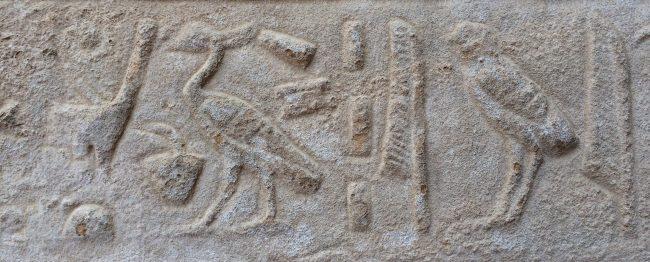 photo of hieroglyphics
