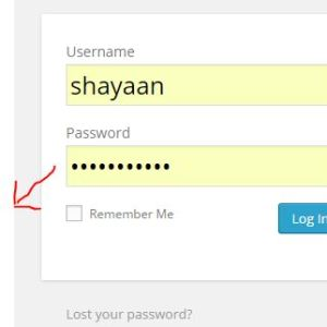See your hidden password in few clicks