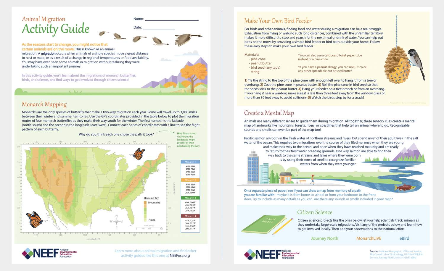 Animal Migration Activity Guide   NEEF [ 696 x 1140 Pixel ]