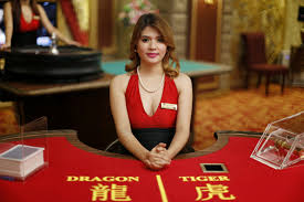 Cara Bermain Dragon Tiger OSG Casino