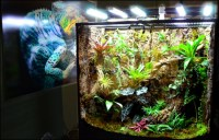 NEHERP - Vivarium Lighting 101 - Everything you need to ...