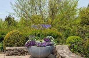 Winston Flowers Garden Design24