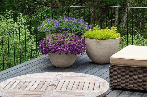 Winston Flowers Garden Design28