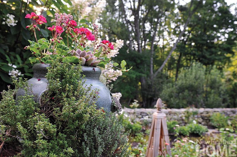Visnapuu deftly marries succulents of all kinds and faithful summer bloomers like bright geraniums for bountiful displays that endure all season long with a minimum of care.