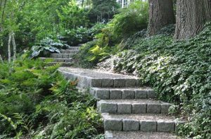 Shady hillside steps by Sudbury Design Group