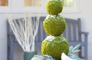 Urn with moss balls