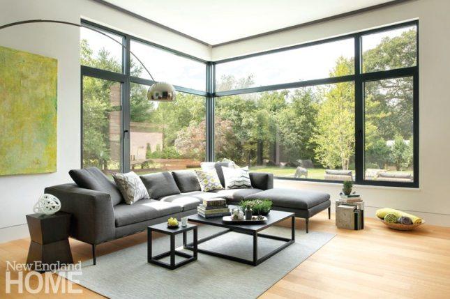 Lexington Contemporary Zero Energy Family Room