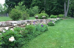 Geoffrey Middeleer: Less can be More when it Comes to Residential Landscape Design