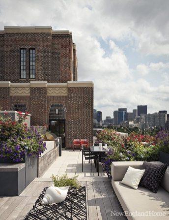 Hacin + Associates roof