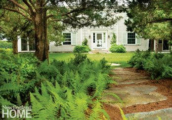 The home's front entrance is approached via a natural-looking walking trail flanked by ferns and native groundcovers.
