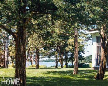 The house tucks in among a grove of cedar trees.