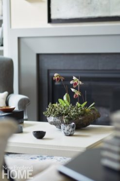 Updated traditional living room fireplace