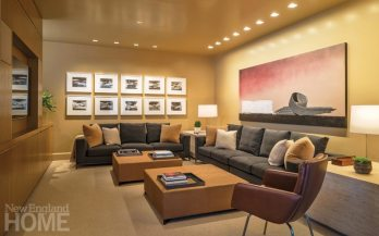 Modern and Minimalist Boston Townhouse Family Room