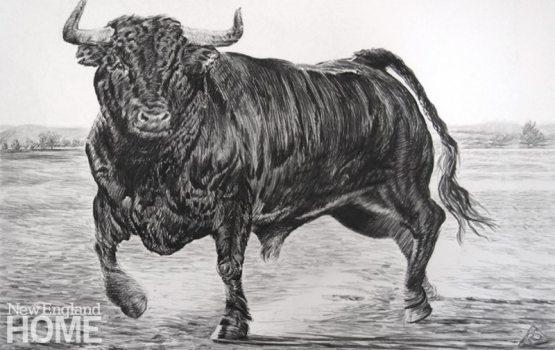 Rick Shaefer Spanish Bull