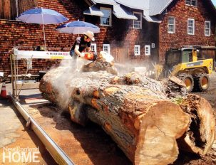 Ted Esselstyn prepares a giant sugar maple for milling in New Haven.