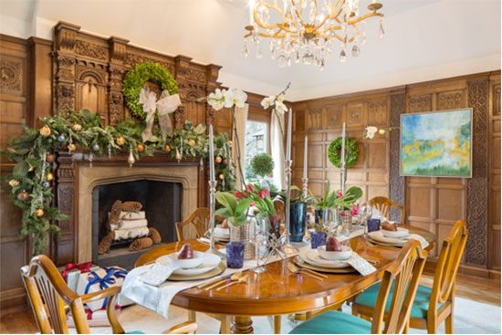 Vani Sayeed Holiday Fireplace