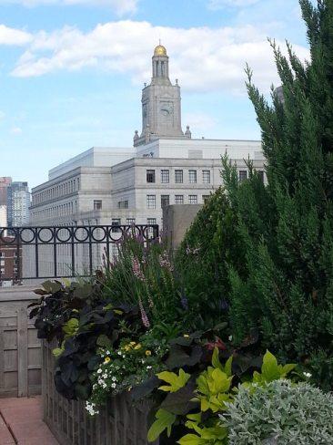 Plantings frame enviable Boston view.