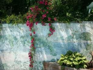 Provincetown Art Association and Museum's Secret Garden Tour