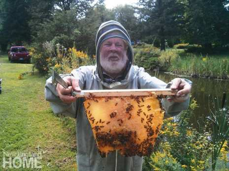 ways to invite nature into your landscape beekeeper