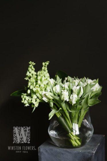 Winston-Flowers-(11)