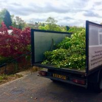 Neil Boulter Tree & Hedge Care Tipper Truck