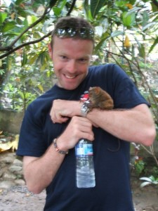 Tarsier monkey, Bohol