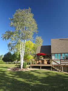 Boulder rural real estate deck