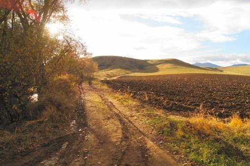 Rural Boulder County